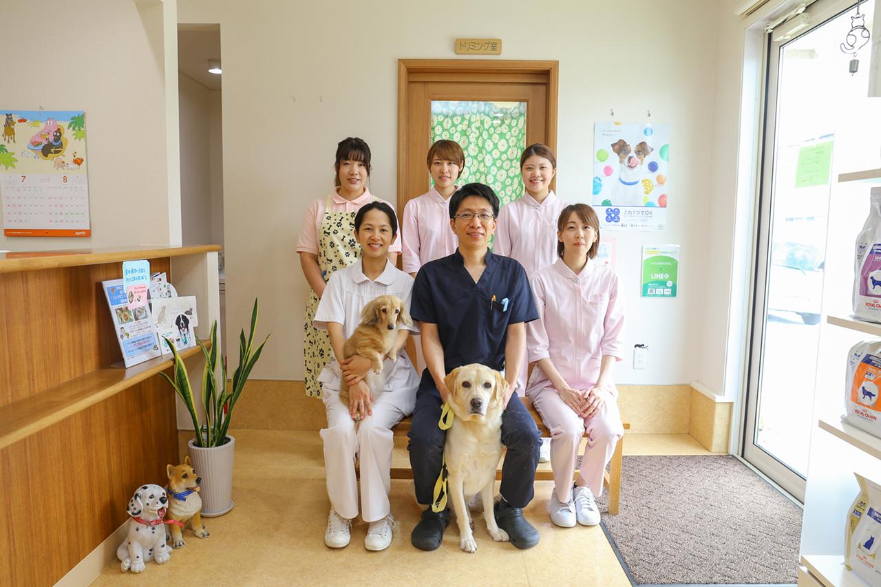 くすの木動物病院